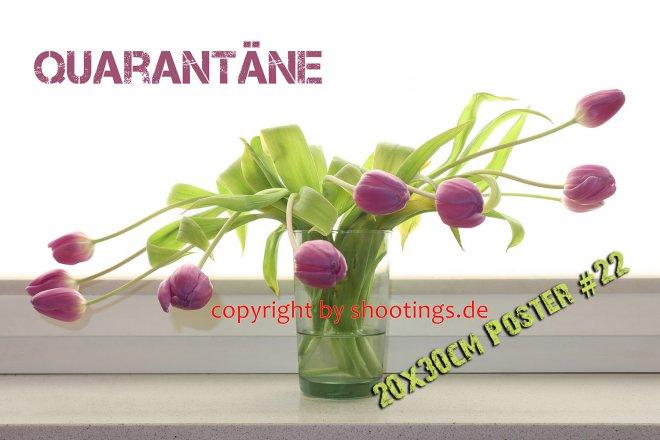 Quarantäne 1 Poster 22