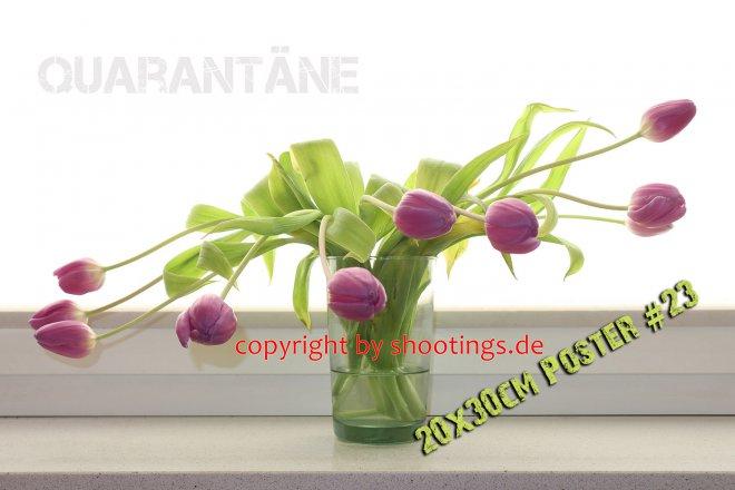 Quarantäne 1 Poster 23